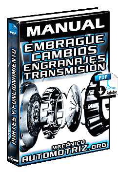 Descargar Manual del Embrague y Componentes