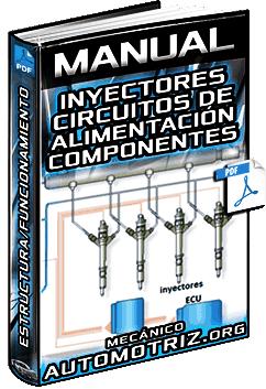 Manual: Inyectores y Circuitos de Alimentación - Estructura, Componentes y Funciones