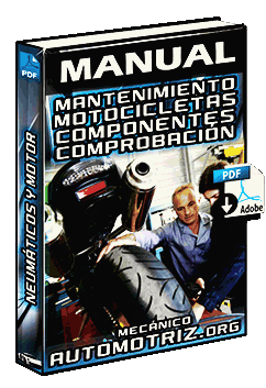 Descargar Manual de Mantenimiento de Motos