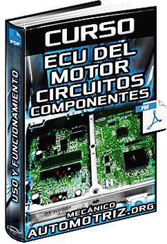 Curso de ECU del Motor – Circuitos, Componentes, Sensores y Señales