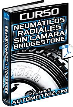 Curso de Neumáticos Radiales sin Cámara Bridgestone - Selección y Componentes