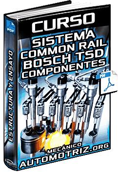 Curso de Sistema Common Rail Bosch TSD – Diagramas, Partes, Componentes y Ensayo
