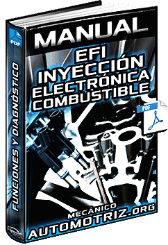 Manual de EFI Inyección Electrónica de Combustible - Sistemas y Funciones