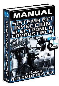 Manual: Sistema EFI Inyección Electrónica de Combustible - Mantenimiento