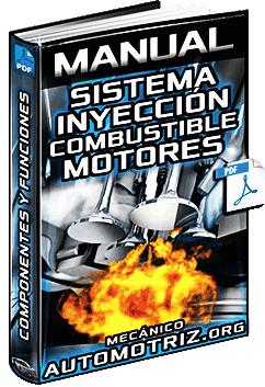 Manual de Sistema de Inyección de Combustible en Motores - Componentes